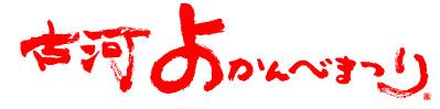 tys_yoka_logo.jpg